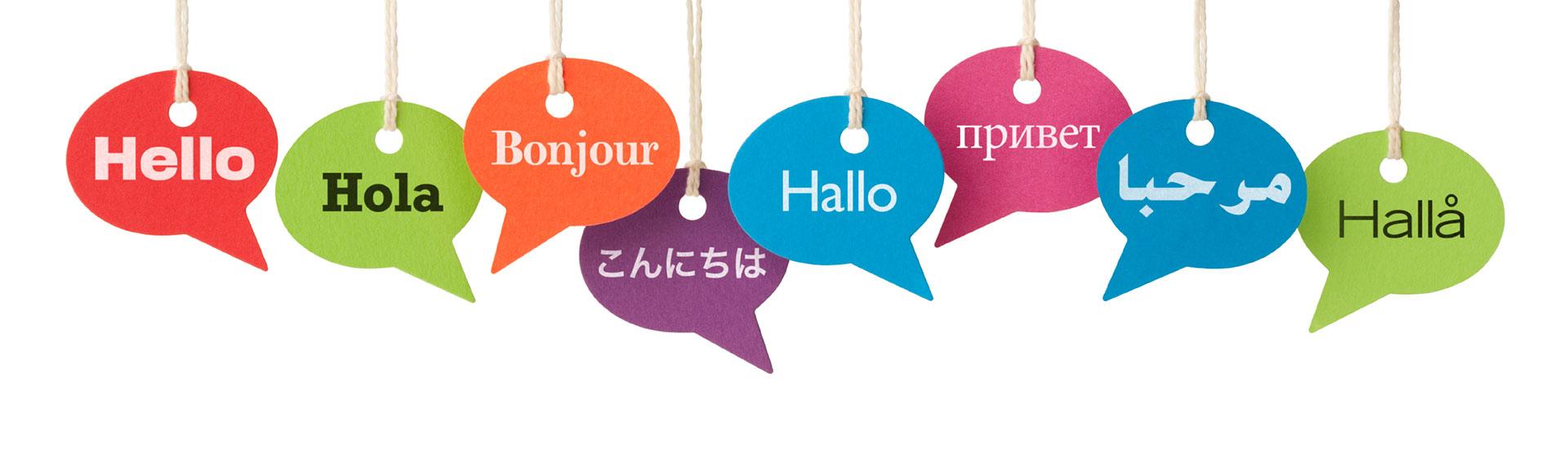 www.servicii-traduceri.ro ajutorul tău pentru traducerea documentelor!